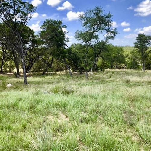Lot 5B for Sale in the Springs of Cordillera Ranch
